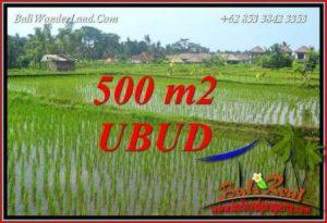 Tanah Murah Dijual di Ubud Bali TJUB708