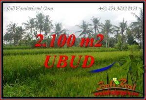 JUAL Tanah di Ubud Bali Untuk Investasi TJUB710