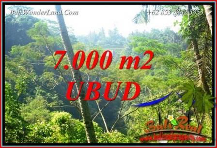 JUAL Tanah di Ubud Bali 7,000 m2 di Ubud Tegalalang