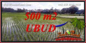 JUAL Murah Tanah di Ubud Bali Untuk Investasi TJUB723