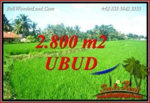 Tanah Murah di Ubud 28 Are di Sentral Ubud