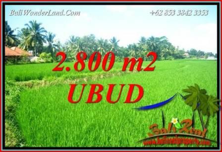 Tanah Dijual di Ubud Bali 2,800 m2 View Sawah Lingkungan Villa