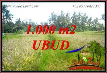 Tanah di Ubud Bali Dijual Murah 1,000 m2 di Ubud Pejeng