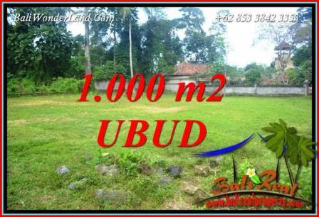 Dijual Tanah Murah di Ubud Bali 1,000 m2 di Ubud Pejeng