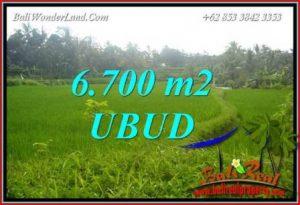 Tanah Murah di Ubud Bali Dijual 67 Are di Ubud Tegalalang