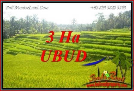 JUAL Murah Tanah di Ubud Bali Untuk Investasi TJUB733