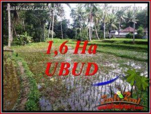 Investasi Properti, Tanah Murah Dijual di Ubud Bali TJUB735