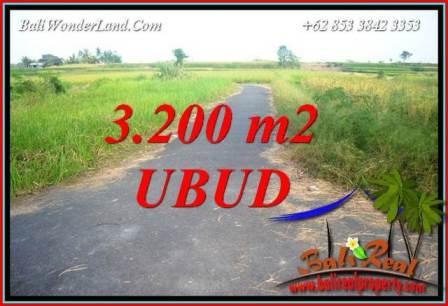 JUAL Murah Tanah di Ubud Bali 32 Are View sawah