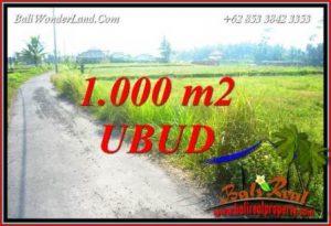 Tanah di Ubud Dijual Murah TJUB739