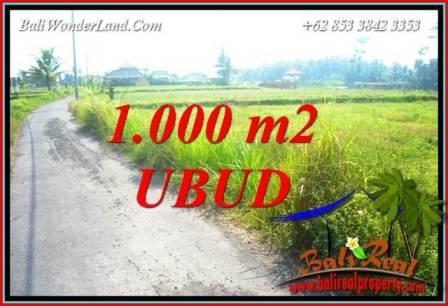 JUAL Murah Tanah di Ubud Bali 10 Are View sawah lingk. villa