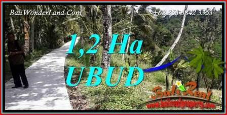 Tanah Dijual di Ubud Bali 12,000 m2 View Tebing dan Sungai