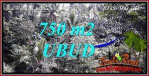 Tanah Murah di Ubud jual 750 m2 View Tebing dan Sungai