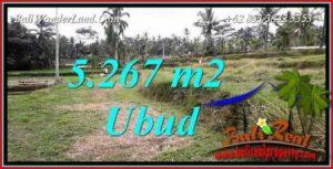 Investasi Property, Tanah Murah di Ubud Bali Dijual TJUB743