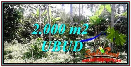 JUAL TANAH super MURAH di UBUD Bali TJUB747
