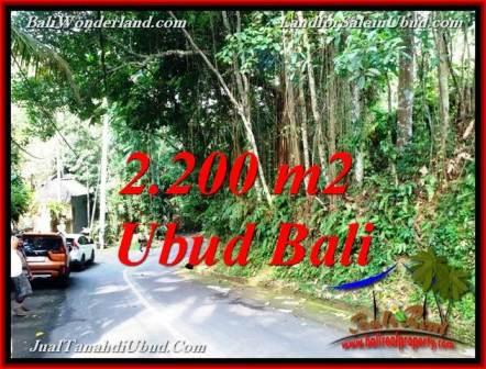 TANAH MURAH di UBUD Bali DIJUAL TJUB768