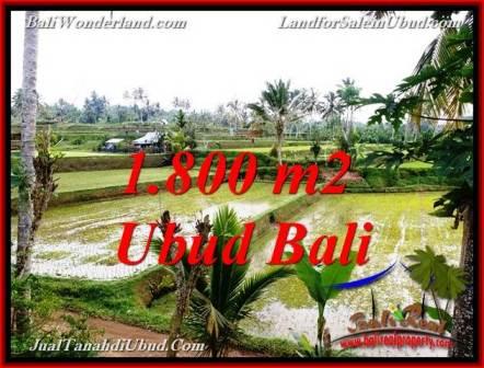 JUAL TANAH MURAH di UBUD Untuk INVESTASI TJUB769