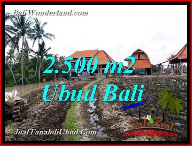 TANAH MURAH di UBUD BALI DIJUAL 2,500 m2 di PEJENG UBUD