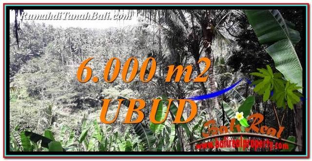 TANAH MURAH di UBUD JUAL 6,000 m2 View Sawah, Tebing dan Sungai
