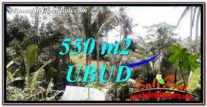 TANAH DIJUAL di UBUD 550 m2 View sawah dan Sungai Kecil