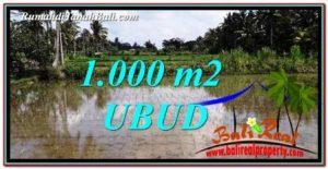 TANAH di UBUD JUAL MURAH 1,000 m2 View Sawah dan pangkung