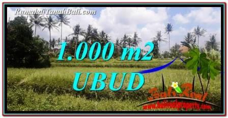 TANAH di UBUD DIJUAL MURAH 1,000 m2 di Ubud Pejeng