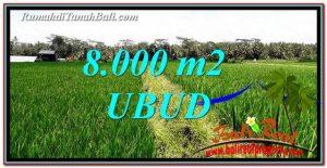 DIJUAL MURAH TANAH di UBUD BALI Untuk INVESTASI TJUB763