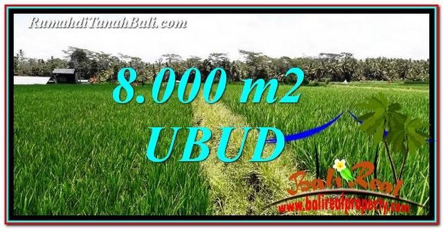 TANAH di UBUD DIJUAL MURAH 8,000 m2 di Ubud Pejeng