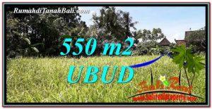 TANAH DIJUAL di UBUD BALI 550 m2 View kebun link Villa