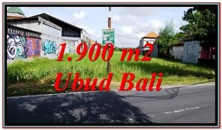 JUAL TANAH Pinggir Jalan di UBUD Bali TJUB773