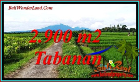 JUAL MURAH TANAH di TABANAN 29 Are VIEW SAWAH, GUNUNG DAN LAUT