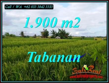 INVESTASI PROPERTI, TANAH MURAH DIJUAL di TABANAN BALI TJTB495