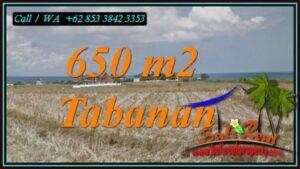TANAH MURAH di TABANAN BALI Untuk INVESTASI TJTB453