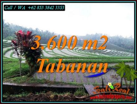 INVESTASI PROPERTI, DIJUAL TANAH DI TABANAN TJTB461