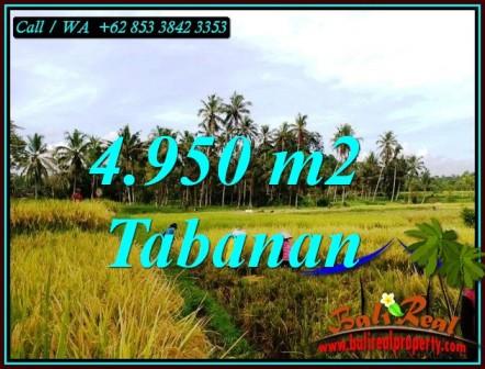 JUAL MURAH TANAH di TABANAN 4,950 m2 VIEW SAWAH, SUNGAI DAN GUNUNG