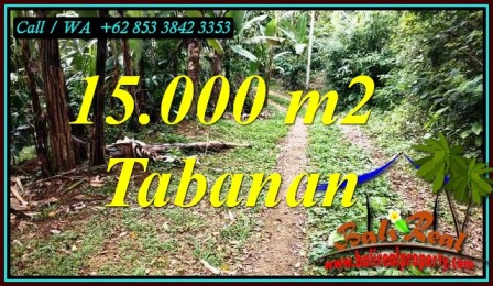 TANAH MURAH DIJUAL di TABANAN BALI TJTB469