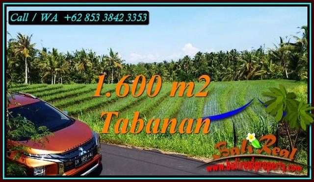 TANAH di TABANAN DIJUAL MURAH 1,600 m2 di SELEMADEG BARAT