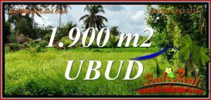 JUAL TANAH MURAH di UBUD 1,900 m2 View sawah, jungle dan sungai kecil